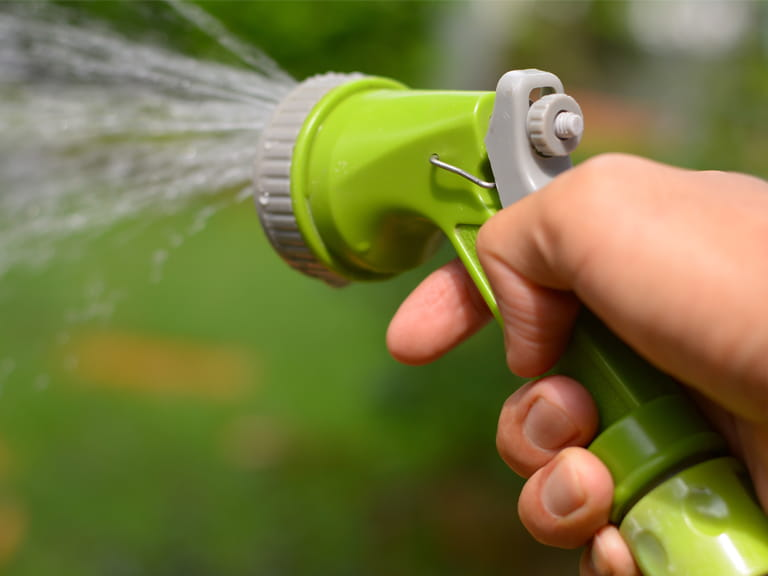 Garden hose with a sprinkler