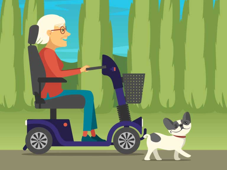 Illustration of older lady on mobility scooter taking her dog for walk in a park.