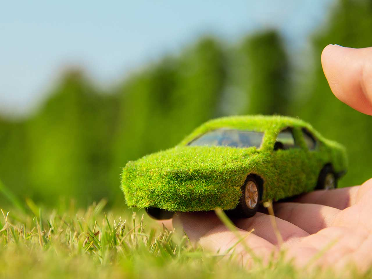 Car covered in grass to show environemntally friendly motoring