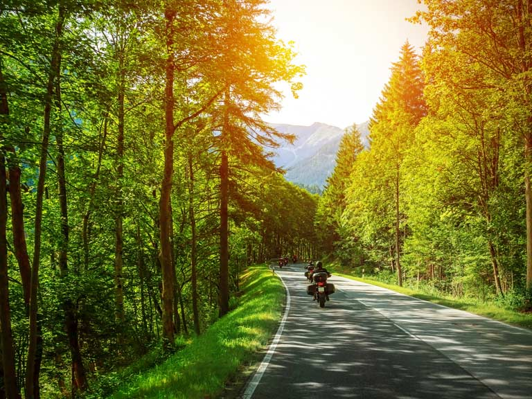 Motorcyclist driving through trees in spring
