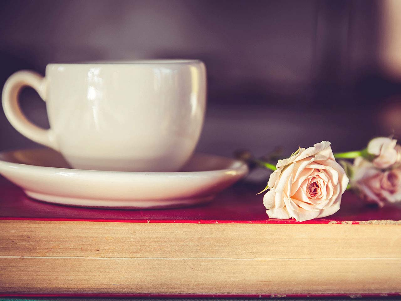 A rose, cup of coffee on an old book