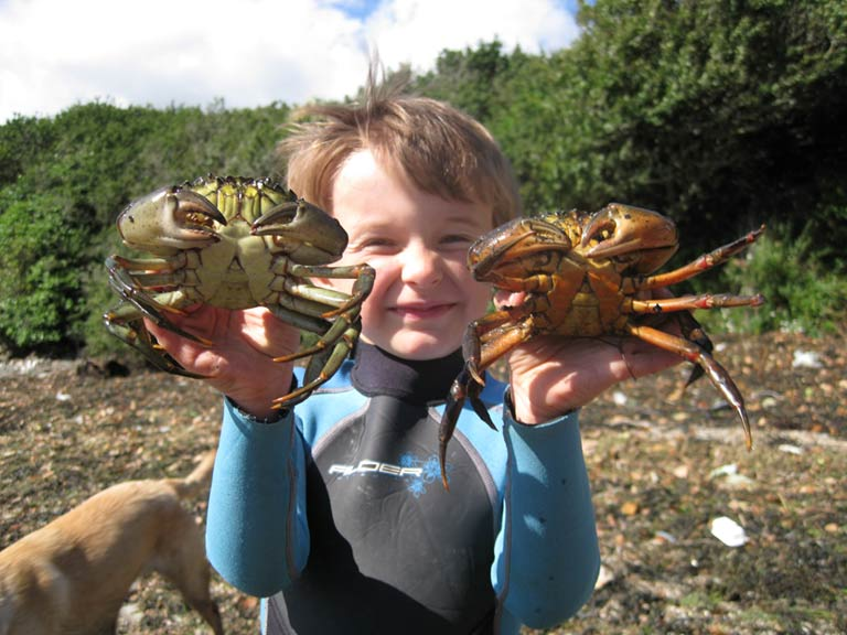 Boy with shore crabs