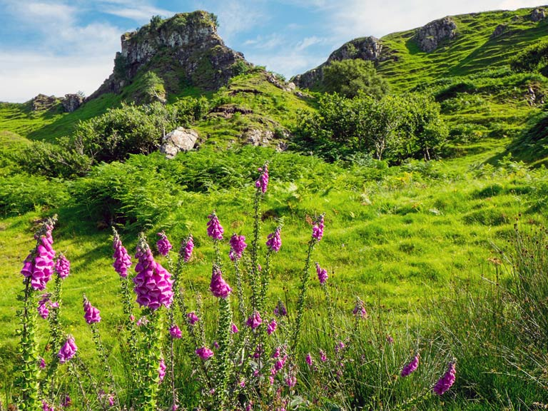 Fairy glen, Isle of Skye