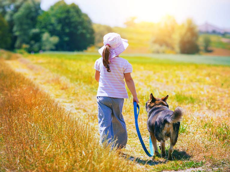 Child walking with a dog