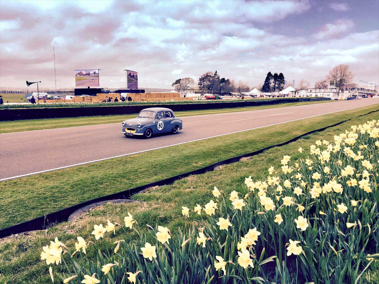 iPhone photo of a car at Goodwood