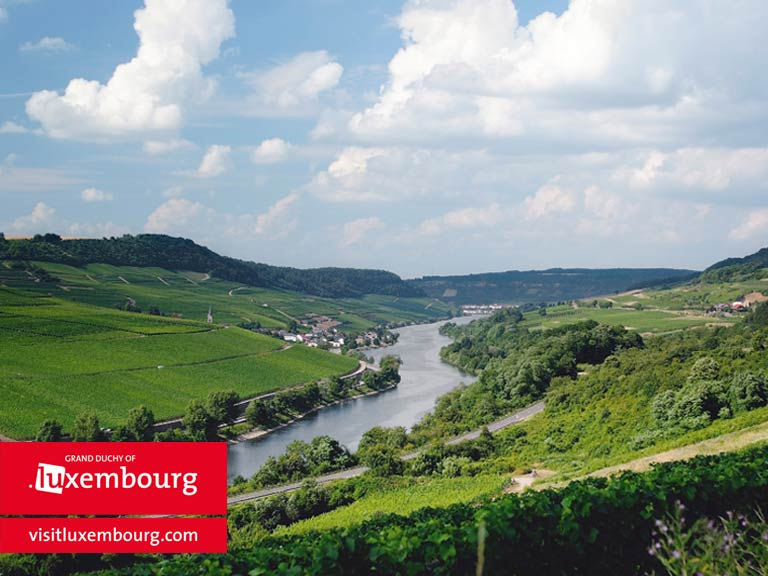 River and vineyards, Luxembourg