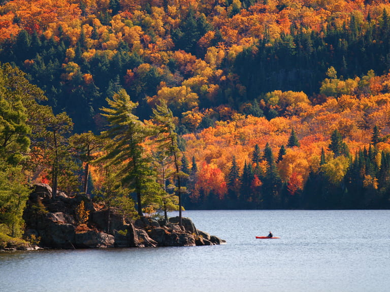 Fall at the Algonquin Provincial park, Ontario, Canada
