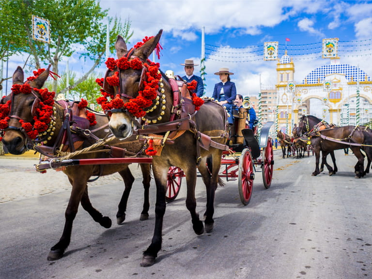 Horses during the Seville festival