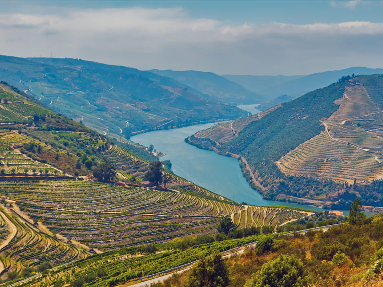 Douro Valley vineyards and view of the Douro River
