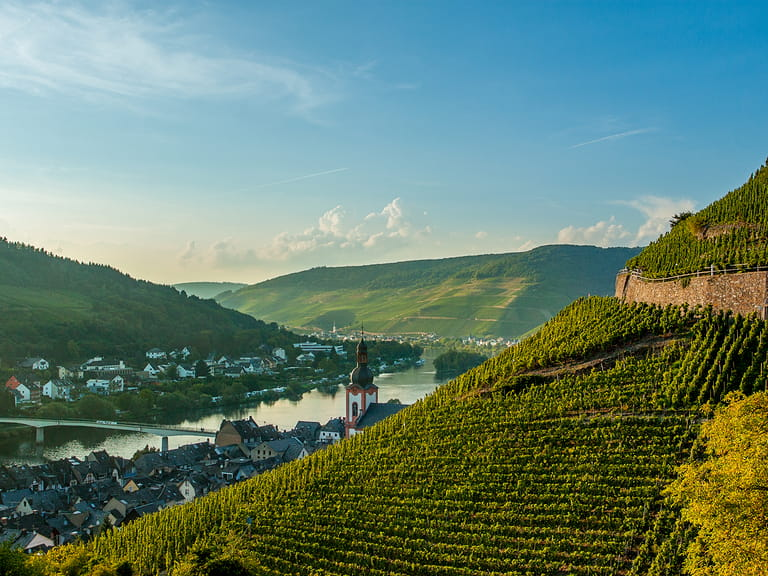 Vineyards in the background on the Moselle river below the small German town of Zell