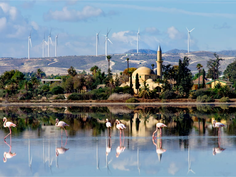 The Hala Sultan Tekkesi mosque and flamingos in the salt lake in Larnaca