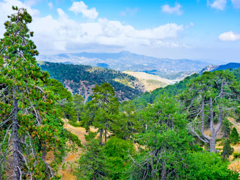 The Troodos Mountains