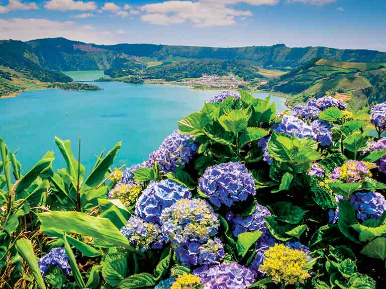 Lake of Sete Cidades with hortensias on the island of São Miguel, Azores