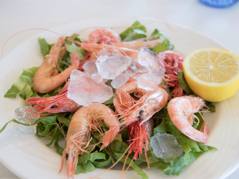 Denia prawns, red shrimp
