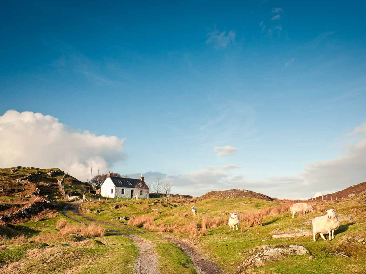 how to rent a holiday cottage saga