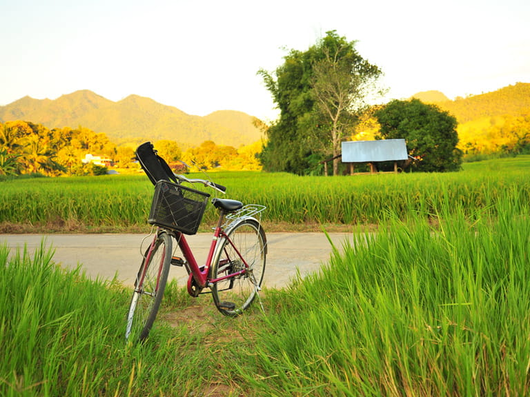 Exploring a destination by bike