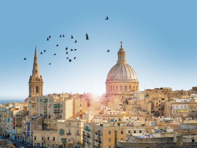 A flock of birds against the skyline of Valletta, Malta